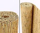 bambussichtschutz im test was sagt die stiftung warentest. Black Bedroom Furniture Sets. Home Design Ideas
