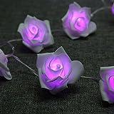 Denknova 20er LED Rosen Lichterkette, batteriebetrieben, Lila, 2 Meter