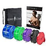 BERRY & CONE Fitnessbänder + E-Book mit 50 Übungen und Transportbeutel | in 5 Stärken wählbar |...