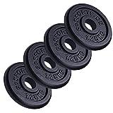 ScSPORTS 5 kg Hantelscheiben Set, ideal für Kurzhanteln, 4 x 1,25 kg, Gusseisen Gewichte, 30/31 mm...