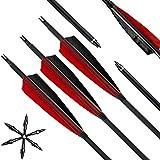 Lizac Pfeile für Bogenschießen, 31 Zoll Bogenpfeile Carbon Pfeile mit 5' Rot und Schwarz...