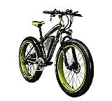 Rich Bit® RT-012 1000 W E-Bike eBike Cruiser Fahrrad Radfahren 48 V 12 Ah hohe Kapazität Akku...