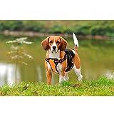 Softgeschirr Brustgeschirr Für Hunde Reflektierende Hundegeschirr Für Outdoor Walking Orange L