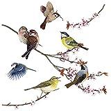 Komar Window-Sticker Birds, 1 Stück, bunt, 16003