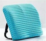 VERCART Lendenkissen zur Unterstützung des Lendenbereichs von Cush Comfort – Rückenkissen zur Linderung von Rückenschmerzen – Orthopädisches Sitzkissen für Sitzgelegenheiten und Stühle – zuhause, im Büro oder im Auto