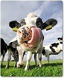 Mauspad / Mouse Pad aus Textil mit Rückseite aus Kautschuk rutschfest für alle Maustypen Motiv: Kuh auf der Wiese |01