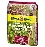Floragard Spezialerde für fleischfressende Pflanzen 3 L, Carnivorenerde