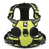 Rantow 3M Reflektierendes Hundegeschirre Einstellbares Sicherheitsgeschirre, weicher Laufgeschirre für große / mittlere / kleine Hunde, Grün (XS (33-43cm))