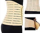 SiaMed Bauchweggürtel für Damen und Herren - Taillenformer - perfekte Abnehmhilfe für einen straffen Bauch (Spar-Set 2x beige 85 cm (XS/S))