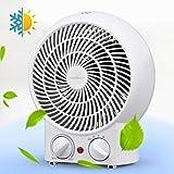 Aigostar Airwin White 33IEK- Heizlüfter mit einstellbarem Thermostat, warm und kalt Dual-Funktion,...
