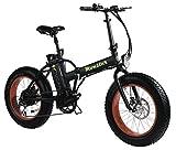 MONSTER 20 - Die Elektro-Faltrad - The Folding Electric Bike - Räder 20' - Motor 500W, 48V-12ah -...