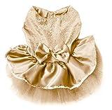 WayGo Haustier-Prinzessin Kleid Bow Blase Lace Rock Haustier Hund Kleidung Kostüm (Champagner, S)