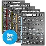 WINDHUND Fitness Poster 5er-Set (Bodyweight Sling Gymball Dehnen Blackroll)