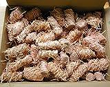 Feuer-Anzünder 200 Stück Grillanzünder Kaminanzünder Ofenanzünder Holzwolle und wachs