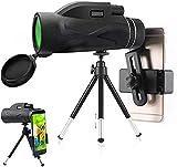 PJPPJH Monokular Starscope Teleskop, 80x100 Hochleistungsprisma Fernrohr, HD Tragbar, wasserdicht, beschlagfrei mit Smartphone-Halter und Stativ für Vogelbeobachtung