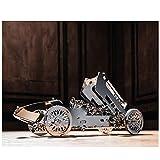 QKKJ 3D Metal Racing Mechanisches Getriebe Puzzle, Schwieriges 92pc3D Puzzle