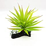 GlobalDeal Direct Kunststoffpflanze für Aquarium, Aquarium, Wassergras, künstliche Reptilien,...