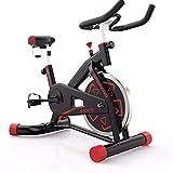 Spinning Bike Indoor Kleines Fahrrad Professionelles Heimtrainer Fahrrad Coach leise drehbar Fahrrad...