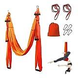 Sotech Aerial Yoga Schaukel, mit Tragetasche und Verlängerungsgurten, Yoga Hängematte für Drinnen...
