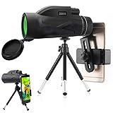 Starscope Monokular, 80x100 Hochleistungsprisma Fernrohr, HD-Dual-Focus-Zielfernrohr Tragbar, wasserdicht, beschlagfrei mit Smartphone-Halter und Stativ für Vogelbeobachtung
