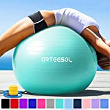 arteesol Gymnastikball 45cm / 55cm / 65cm / 75 cm inkl. Pumpe Anti-Burst Sitzball für Yoga Pilates...
