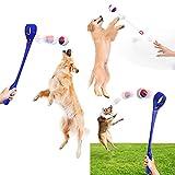 Tibroni Hundeball mit Seil Naturkautschuk (6CM), Spielzeug-Queue 48CM Wurfball Hundespiel-Ball mit Schnur - Bälle Spielzeug am Seil für Hunde - Kauspielzeug aus Naturgummi - Hunde-Spielzeug (B-BL)