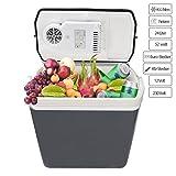 Hengda Kühlbox Thermo-Elektrische 24 Liter, WÄRMT und KÜHLT, Mini-Kühlschrank 12 Volt und 230...
