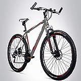 Bergsteiger Detroit 29 Zoll Mountainbike, geeignet ab 170 cm, Scheibenbremse, Shimano 21...