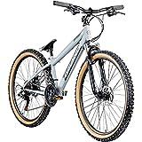Galano Dirtbike 26 Zoll MTB G600 Mountainbike Fahrrad 18 Gang Dirt Bike Rad (Silbergrau/schwarz, 33...