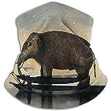 RP Amazing Headband,Elefanten Katzen Im Boot Surreal Art Magic Stirnband, Fashion Neck Gamasche Für...