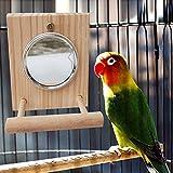 Renoble Vogelspielzeug Vogel Barsch Ständer Vogelspielständer Papagei Mit Spiegel,...
