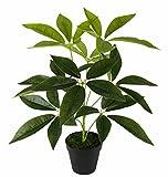 Flair Flower Schefflera Pflanze im Topf Real Touch Kunstpflanzen Zimmerpflanzen künstlich...
