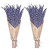Getrocknete Lavendel-Bündel, Uieke natürlich getrocknete Lavendelblüten 280-300 Stiele 40,6 cm für Home Weeding Dekoration Blumenarrangements Home Duft 2 Bündel