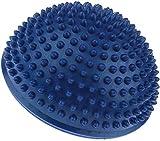 HarmonyHappy Yoga Aerobic Balance Ball Igel Style Balance Pod Fitness Gymnastik Gym – Blau,...