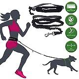 barf-alarm Joggingleine Hunde mit Bauchgurt inkl Tasche – 180cm Reflektierende Freihandleine –...