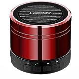 EasyAcc Mini Portable Bluetooth 4.0 Lautsprecher Speaker mit Multifunktions (FM Radio, 3,5 mm Audio,...