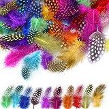 MWOOT 120 Stück 5-13cm Bunte Indianer Feder zum Basteln Federn bunt für DIY Kunstwerk, Dekoration für Karneval Masken, Hüte oder Haarschmucken, 10 Farben