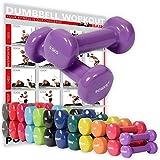 POWRX Vinyl Hanteln Paar Ideal für Gymnastik Aerobic Pilates 0,5 kg – 10 kg I Kurzhantel Set in...