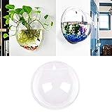 Inception Pro Infinite - Wandaquarium - Glasfisch - Vase - Hydrokulturpflanzen - 15 cm -...