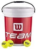 Wilson Tennisbälle Team Trainer, gelb, Eimer mit 72 Bällen, WRT131200