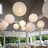 10 Stücke Papierlaterne Laterne Deko Feier Lampions Papierlampen mit 10er Mini LED Lichter (Weiß...
