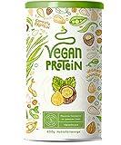 Vegan Protein | HASELNUSS | Pflanzliches Proteinpulver aus Reis, Lupinen, Erbsen, Chia-Samen,...