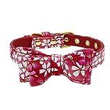 Haustier Hund einstellbar Bedruckt Bowknot Kragen Katze Welpen Halskette (20-26 * 1.5cm,4Rot)