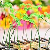 dontdo Haarspange für Damen, Herren, Kinder, Blume, Gras, Haarnadel mit niedlicher Pflanze