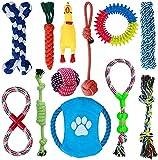 Tangpu 12 Pcs Seil Ball Hunde Kauen Spielzeug Set Für Kleine große mittelgroßen Hund Interaktives Spielset Unzerstoerbar Baumwollknoten Tau Tier