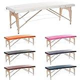 H-ROOT 2 Zonen Leichte Tragbare Massage Tisch Couch Bett Sockel Therapie Tatoo Salon Reiki Heilung...