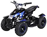 Actionbikes Motors Mini Kinder Elektro Quad ATV Cobra 800 Watt 36 V Pocket Quad - Original Saftey...