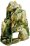Europet Bernina 234-104569 Aquariendekoration Stone, 19 cm, moos