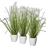 Klocke Dekorationsbedarf Kunstpflanze - Gras im Topf - 3 Stück - Höhe: 36cm - Farbe: Grün/Creme -...