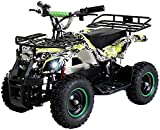 Actionbikes Motors Kinder Elektro Miniquad ATV Torino 800 Watt 36 Volt - Scheibenbremsen - Safety...